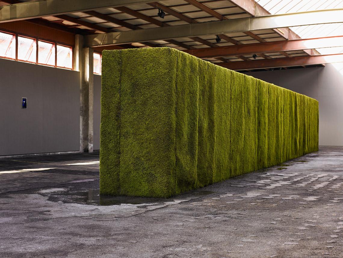 _Daniel-Karrer_Kunsthalle-Arbon-2019_1